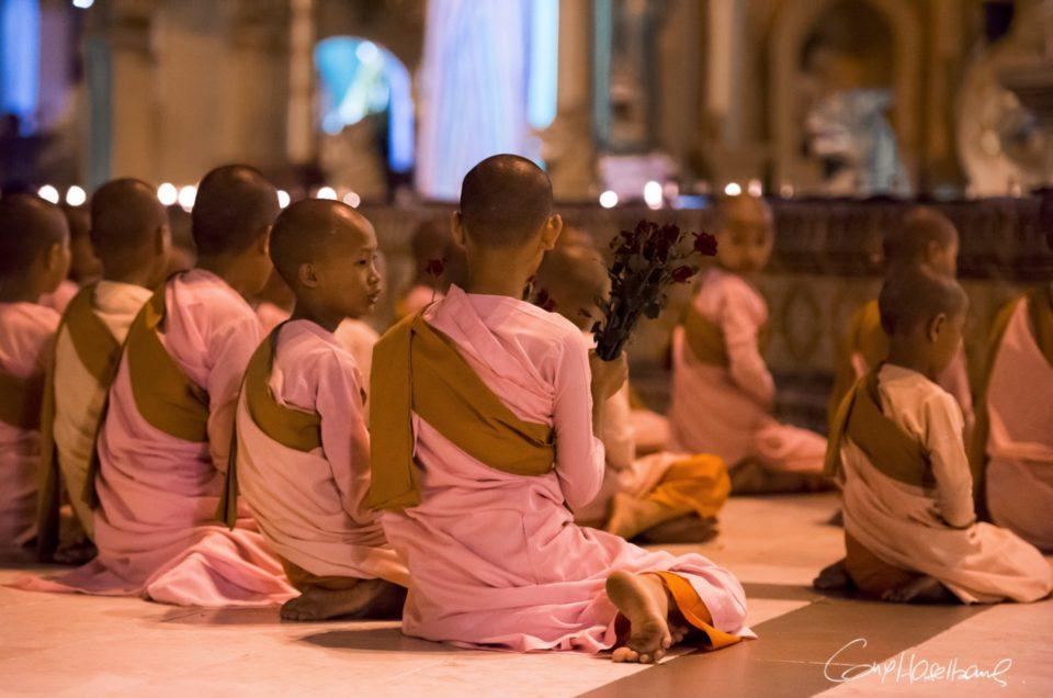 Les moinillons de la Shwedagon pagoda.