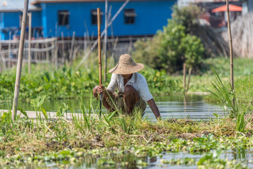 Birmanie16-2169