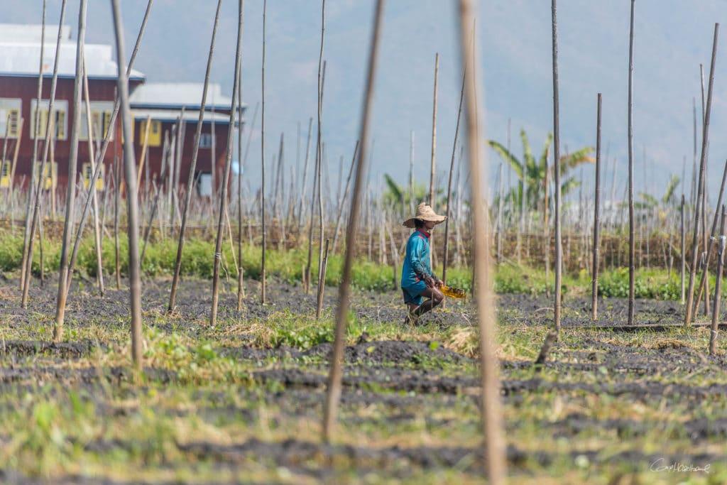 Birmanie16-2182