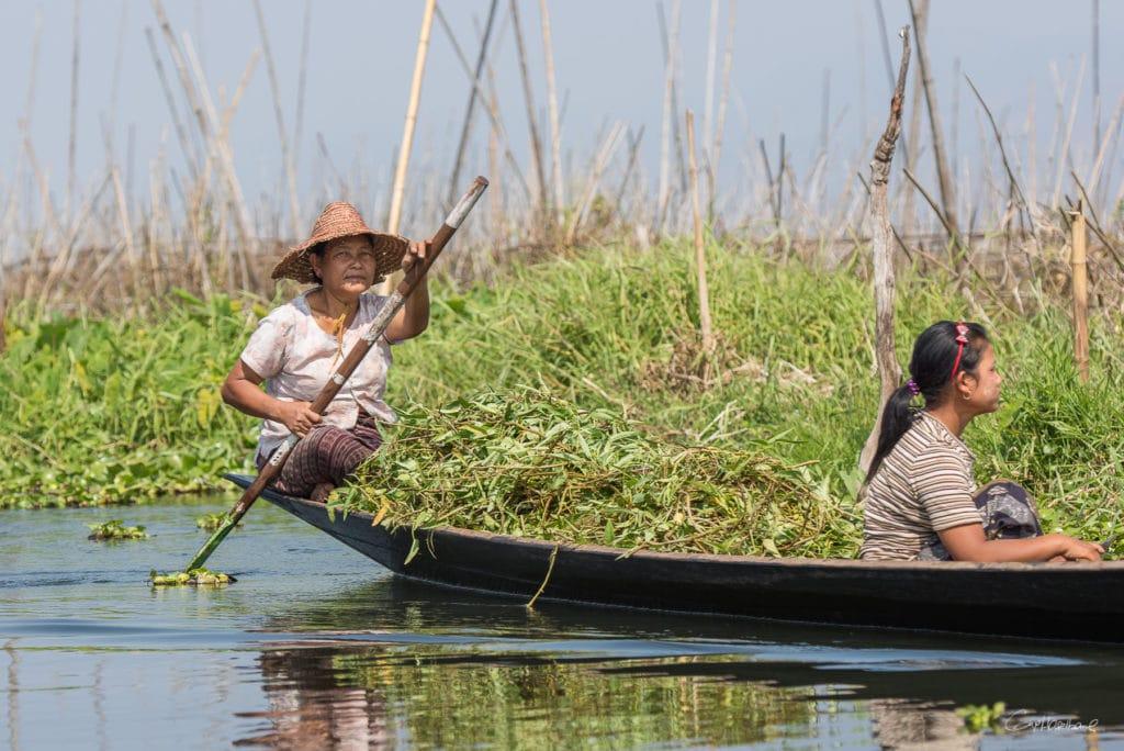 Birmanie16-2185