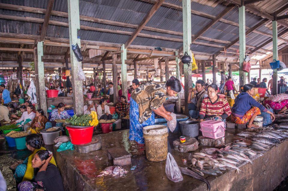 Le marché de poisson couvert.