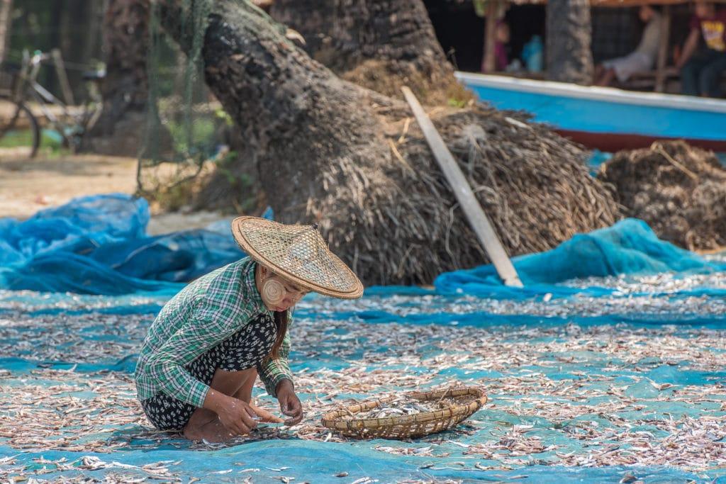 Birmanie16-3607