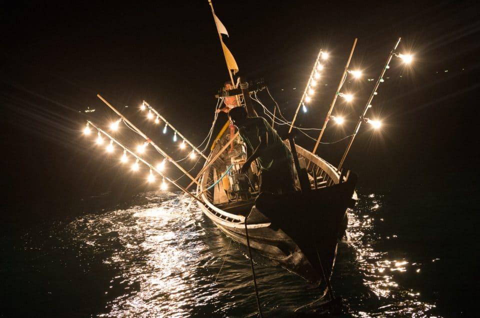 La pêche de nuit à la lampe.