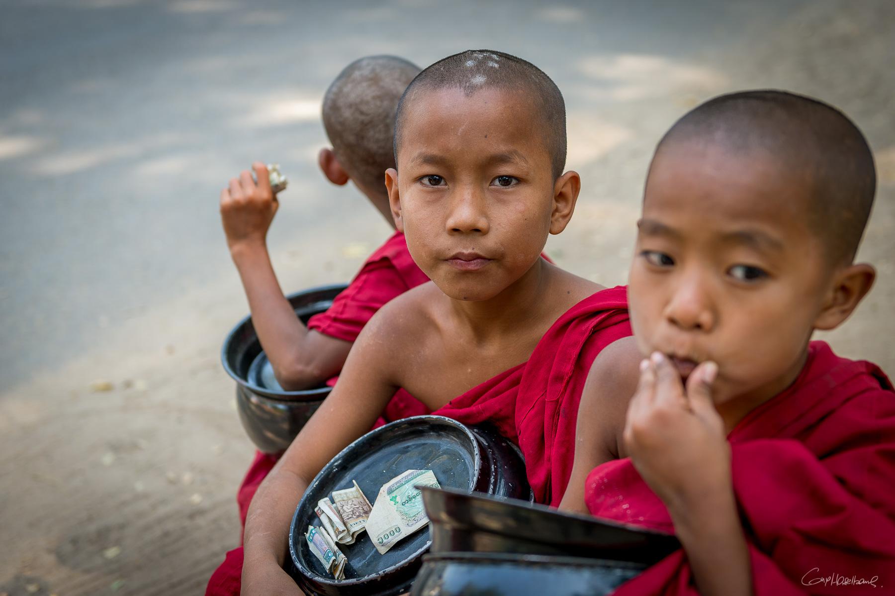 Jeunes moines de Sale - Région de Mandalay - Birmanie.