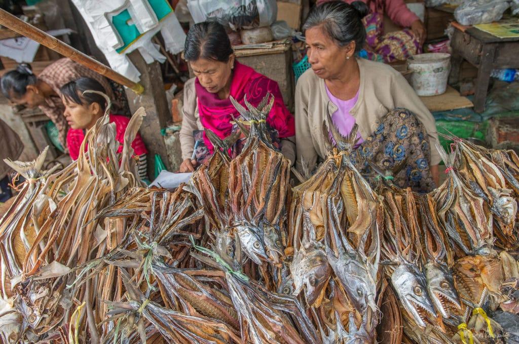 Marché au poisson de Sittwe, Etat de l'Arakan
