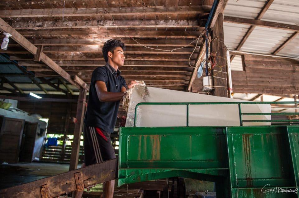 La petite fabrique de glace «Lin Ther».