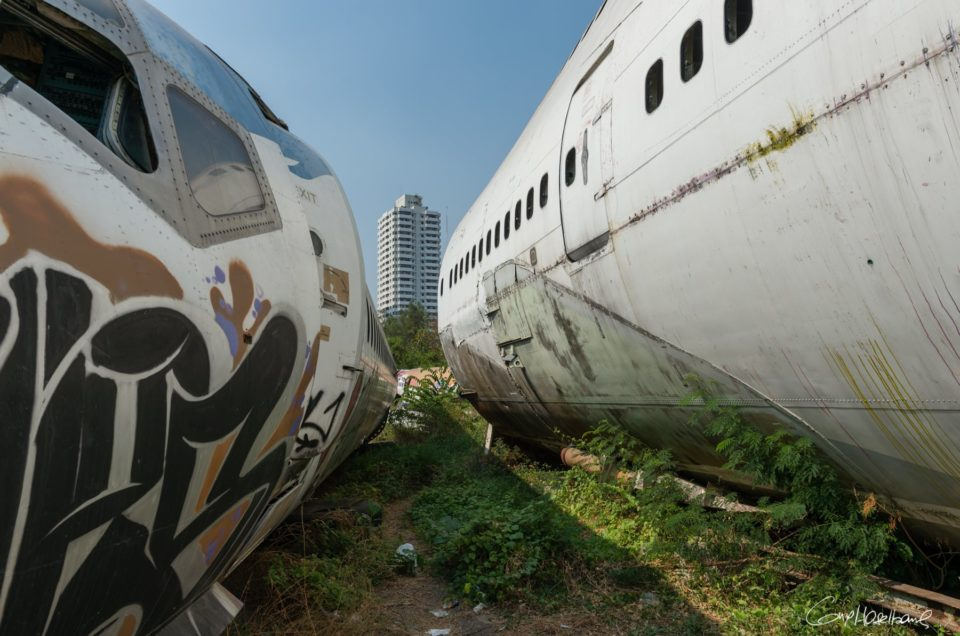 The inhabitants of the airplane graveyard.