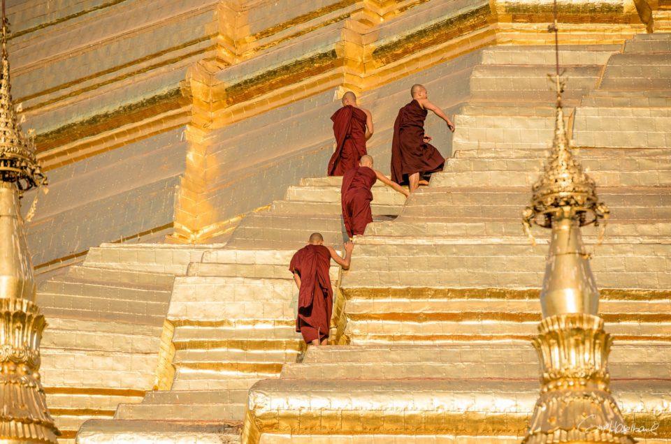Farewell Shwedagon.